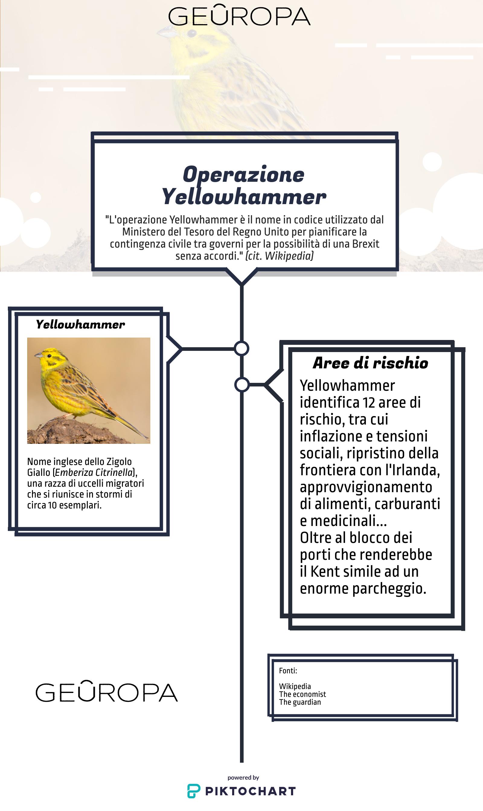 operazione yellowhammer infografica